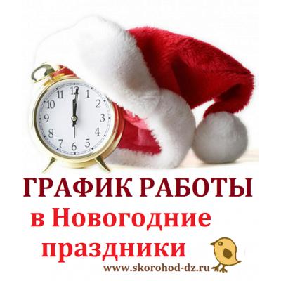 ГРАФИК РАБОТЫ с заказами в Новогодние праздники!